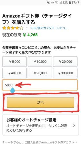 任意の金額を入力し、「次へ」ボタンを押す